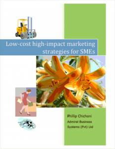 Low Cost High Impact Marketing Strategies for SMEs (40 pages)     Print edition $7.00         E-version PDF on CD $4.00