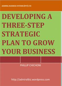 Developing a Three Step Strategic Plan to grow Your Business (40 pages) Print edition $12.00 E-version PDF on CD $4.00